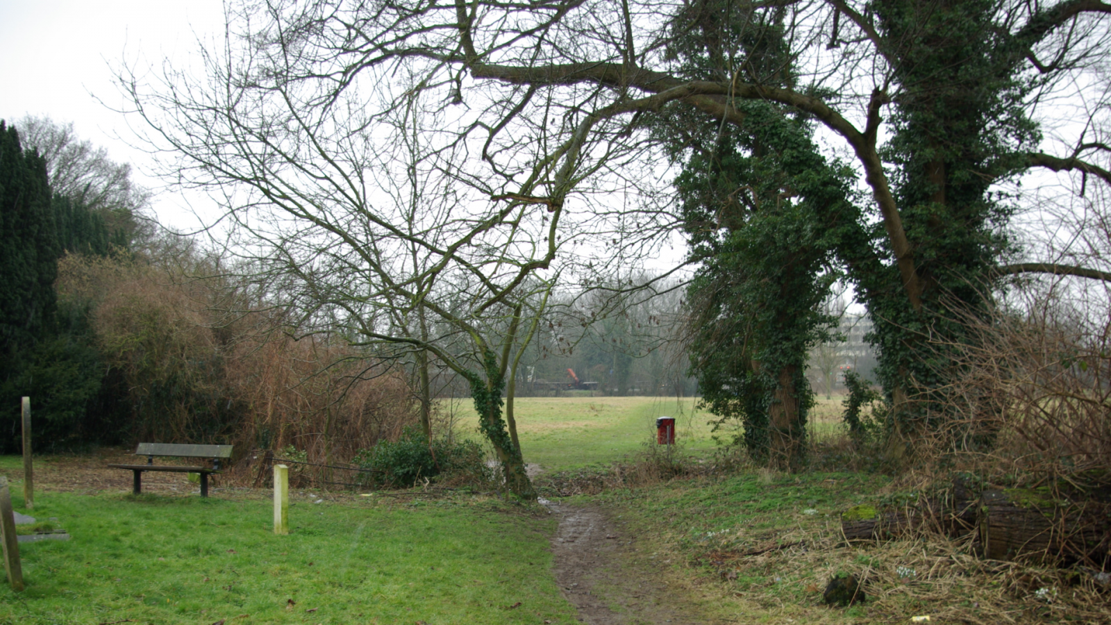 Picture of a path through Church Meadows