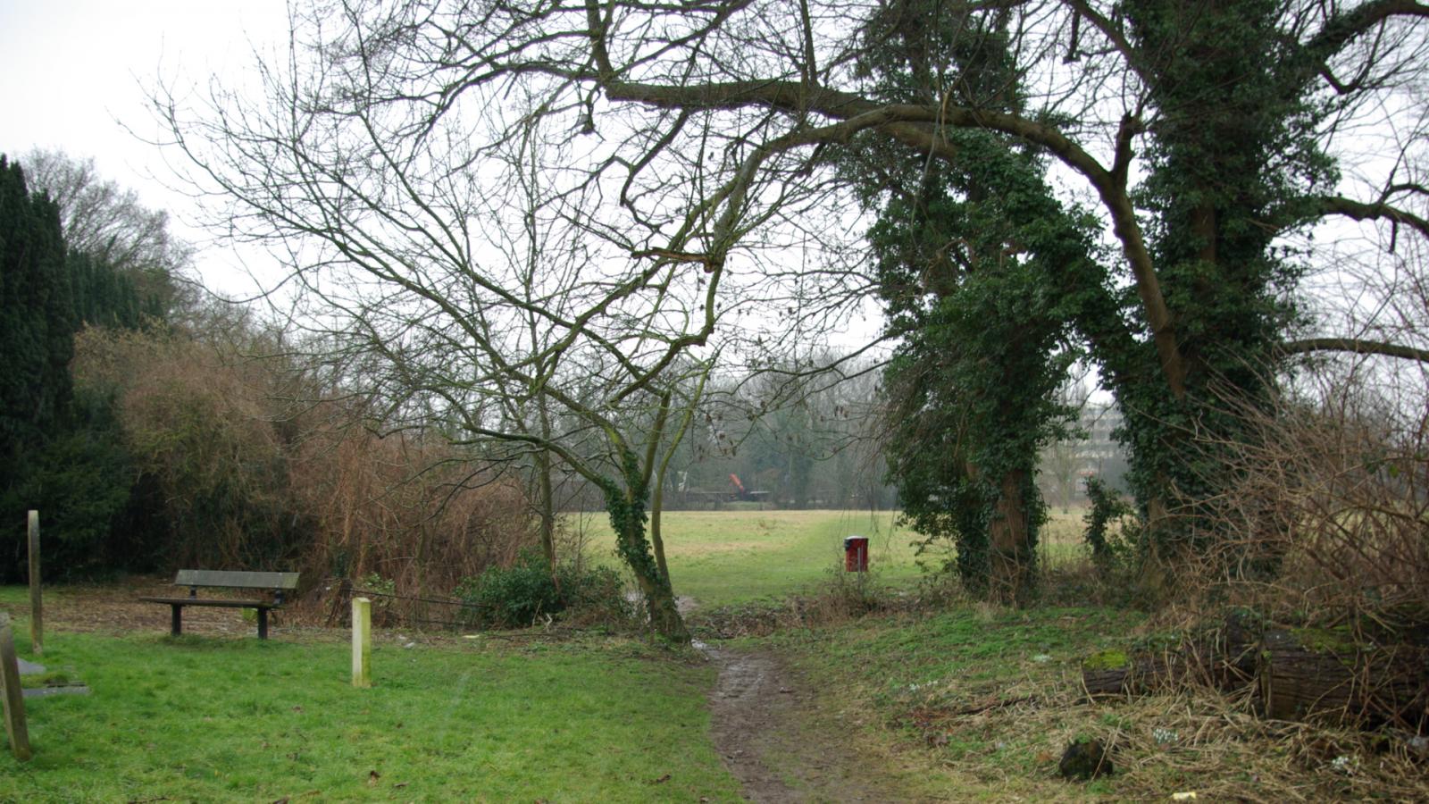 Picture of a path through Church Meadows